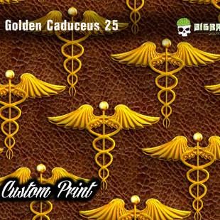 Golden Caduceus 25.jpg