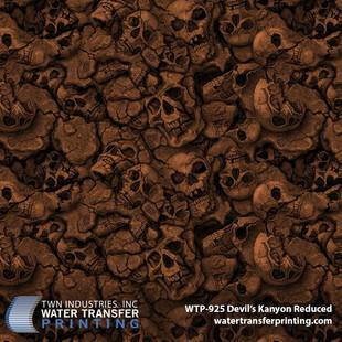 WTP-925 Devil's Kanyon Reduced-Brown.jpg