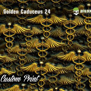 Golden Caduceus 24.jpg