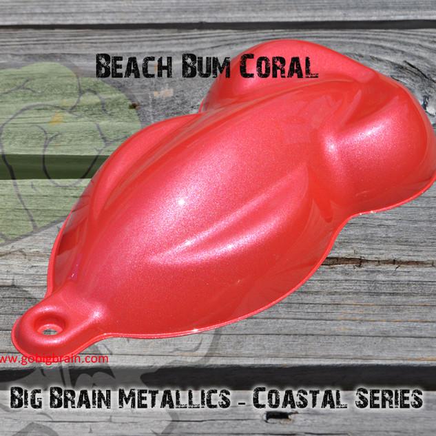 Coastal Series - Beach Bum Coral.jpg