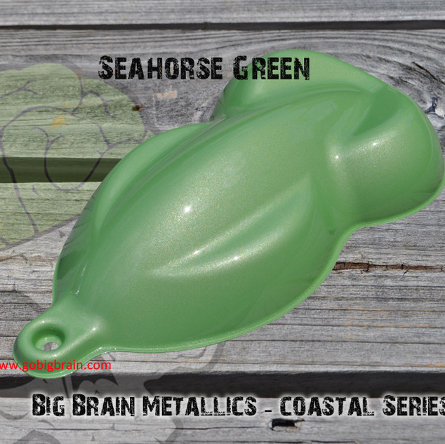 Coastal Series - Seahorse Green.jpg