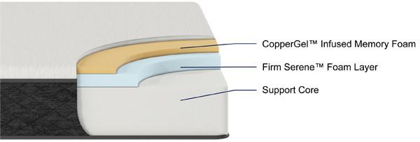 AURORA cutaway.jpg