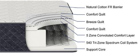 SARANAC Plush cutaway.jpg