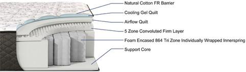 JASMINE Firm cutaway.jpg