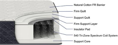 SARANAC Firm cutaway.jpg