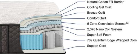 ARIA Plush cutaway.jpg