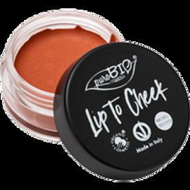 Lip To Cheek - 01 Carrot