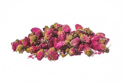 Rosa rossa boccioli