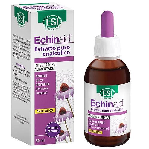 Echinaid estratto analcolico