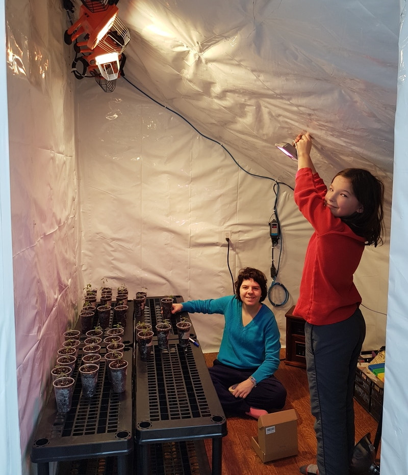 Students installing a light in the greenhouse propagation room