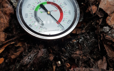 Temperatures in our student compost bin reaching a healthy 180 degrees Fahrenheit