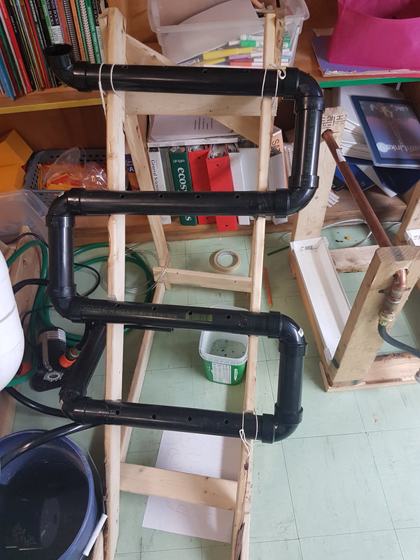 Middle school science hydroponics project