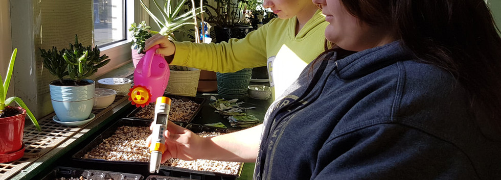 Students watering seedlings and checking the PH level of our growing medium