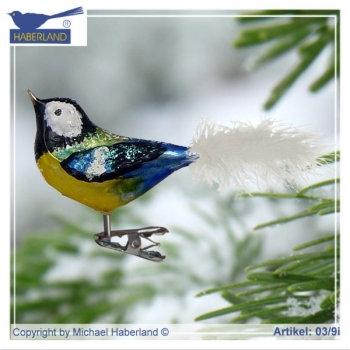 Big Bird Blue/Yellow  A03/9