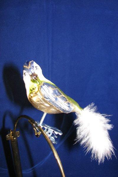 Gary Bird     A03-12A
