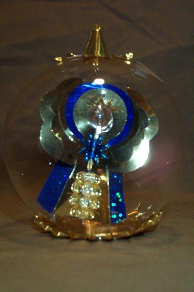 Gold/Blue Angel  163GB