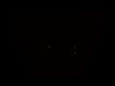 WholeClothStudio_Logo_Transparent_Black_edited.png