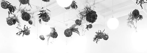 ceiling_edited.jpg