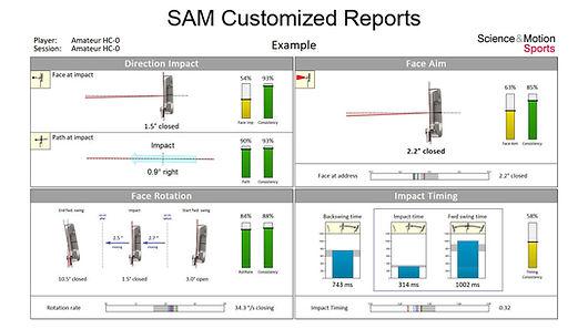 SAMCustomizedReports.jpg