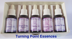 The Turning Point Essence