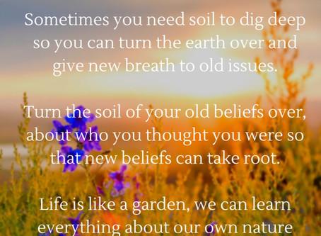 Replanting our Inner Gardens