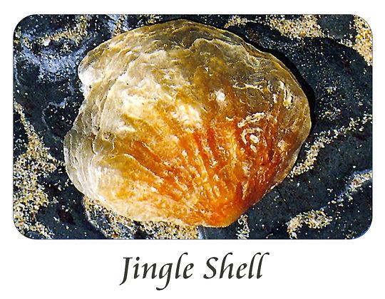 Jingle Shell