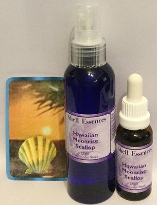 Hawaiian Moonrise Scallop card spray and stock