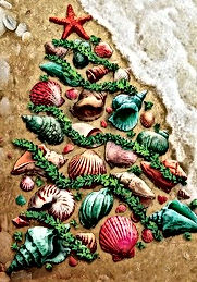 SEASHELL-CHRISTMAS-TREE-Shore-BEACH-COAS