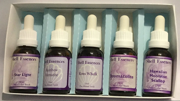 Box of 5 Single Stock Essences of your choice