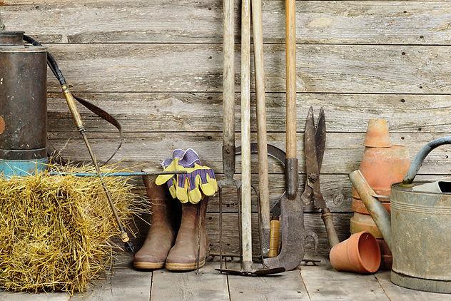 Gardening image