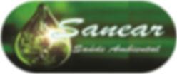 logo sanear.jpg