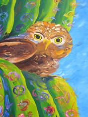 Pygmy Owl and Saguaro