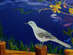 Mockingbird at Night