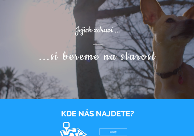 Tvorba internetových stránek pro veterinární pohotovost sítě veterinárních klinik VetPark