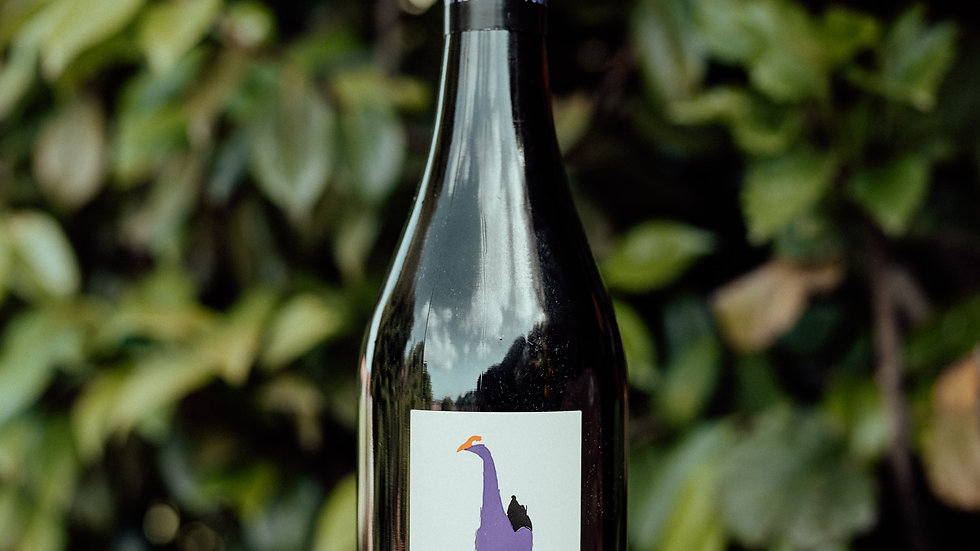 Purple Hen Pinot Noir