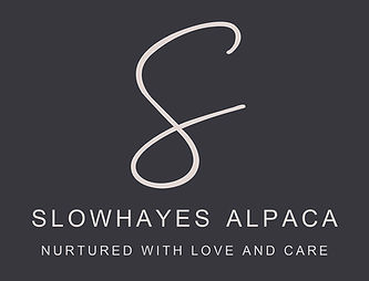 Slowhayes Alpaca Logo.jpg