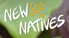 NewNativesLogo2.png