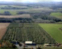 vue_aerienne%5B2%5D_edited.jpg