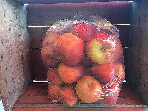 Pomme à cuisson-hors norme