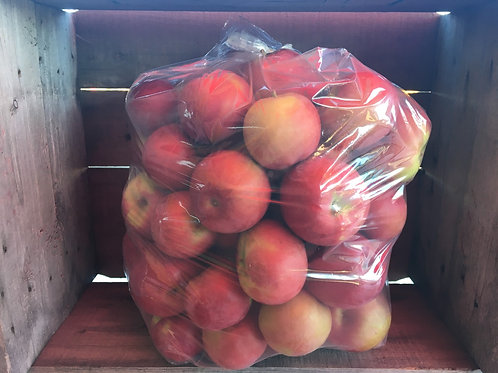 20 lbs de pommes