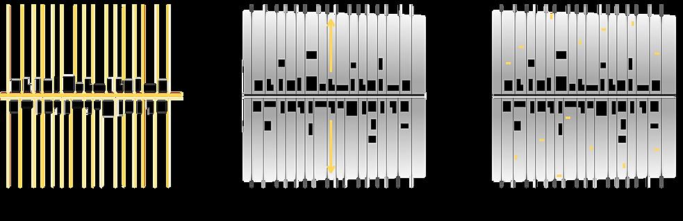 mitro-6.png
