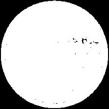preserve 2021 logo.png