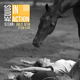 #EquusInAction_Session 1.jpg