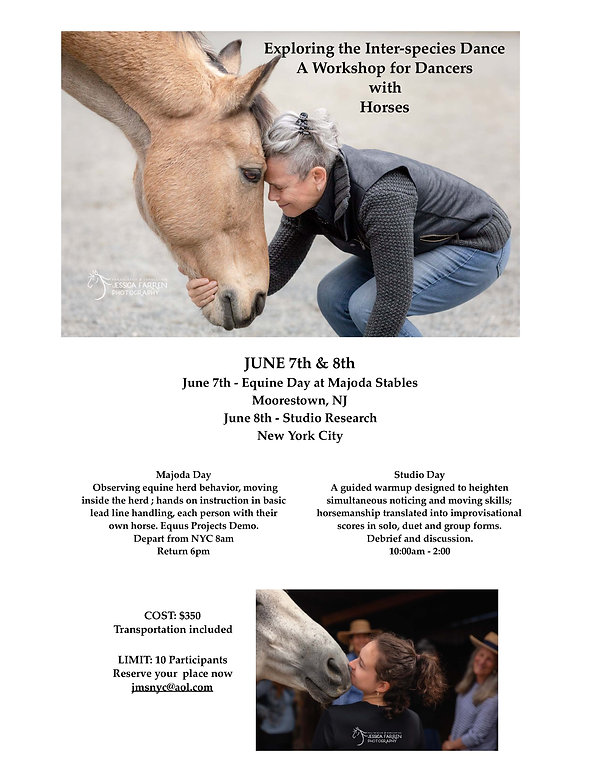 Workshop for Dancers With Horses_June 20