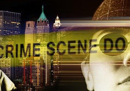 Do Private Investigators Investigate Murder?