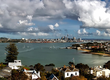 How to Become a Private Investigator in New Zealand