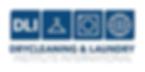 DLI 2017 Logo WEB-242x100.png