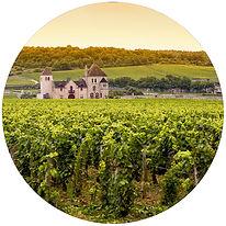 burgundy france.jpg