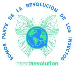 InsectRevolution   Chile