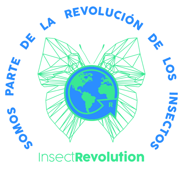 InsectRevolution | Chile